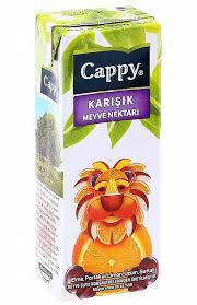 200 ML CAPPY KARIŞIK MEYVESUYU